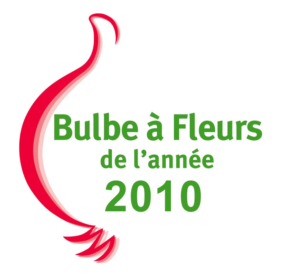 bulbe-a-fleur-2010