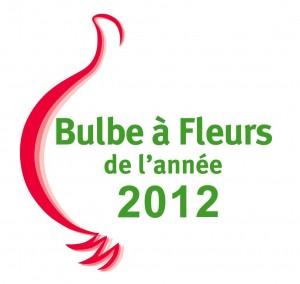 bulbe-a-fleur-2011