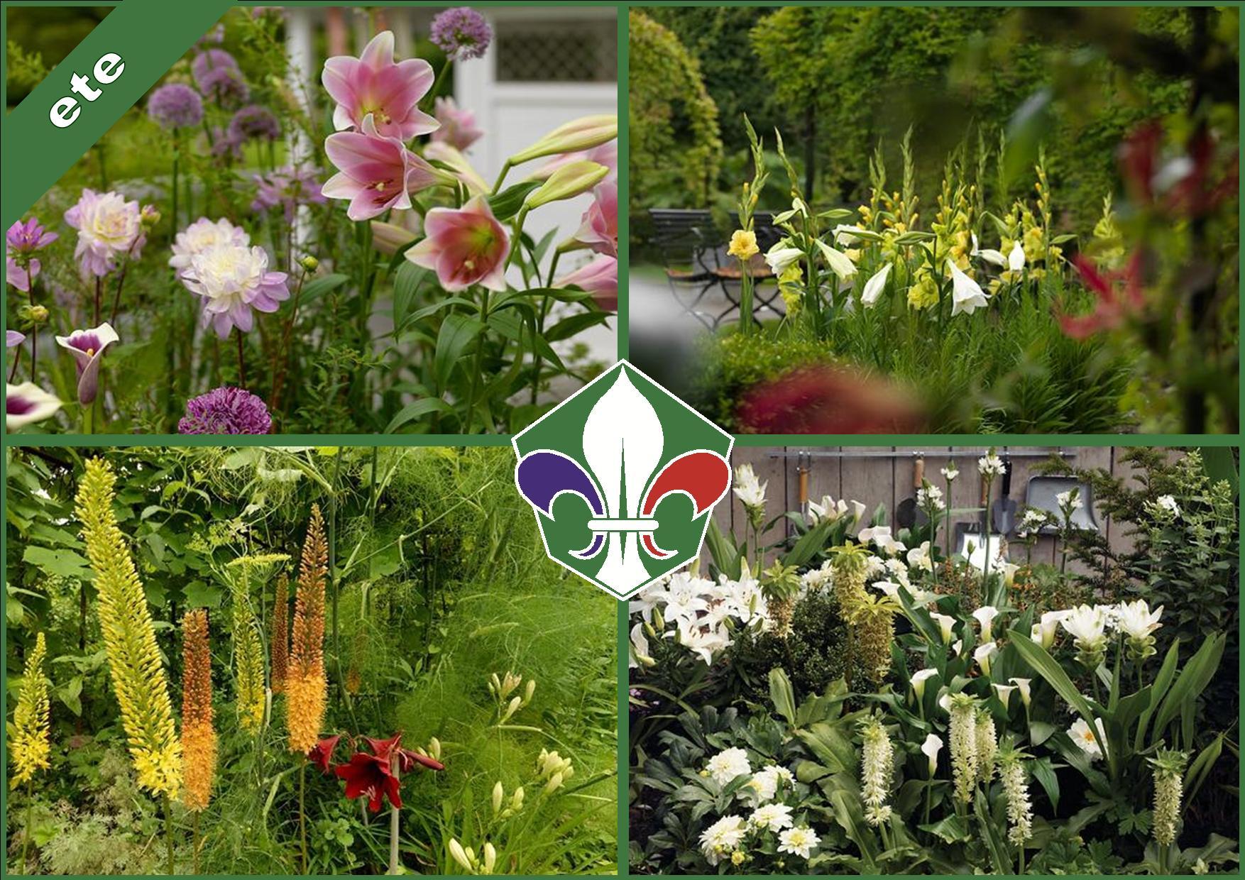 foto-bloembollen